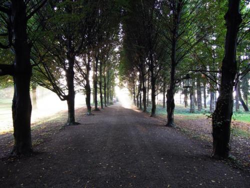 viale antico podere di rezzano